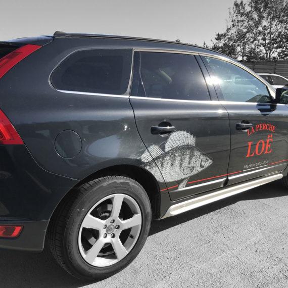 Pose d'un sticker sur une voiture pour l'entreprise La perche Loë